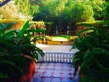 庭院视图 图库摄影