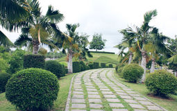 庭院走的路 免版税库存图片