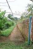 庭院走道在皇家玫瑰花园竞技场 库存照片