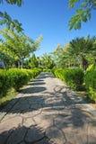 庭院路径   免版税库存图片