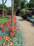 庭院道路和郁金香草本边界在徒步旅行队停放,英国 免版税库存图片