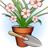 庭院铁锹和窗口植物 免版税库存图片