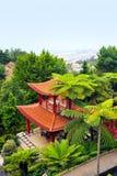 庭院马德拉岛热带monte的宫殿 图库摄影