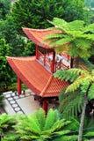 庭院马德拉岛热带monte的宫殿 库存图片