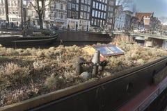 庭院驳船阿姆斯特丹 库存图片