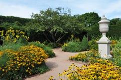 庭院黄色 免版税库存照片