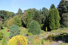庭院,圣安德鲁斯植物园,圣安德鲁斯 库存图片