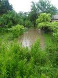 庭院洪水 免版税图库摄影