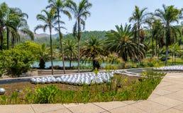 水仙庭院Inhotim公开当代艺术博物馆的- Brumadinho,米纳斯吉拉斯州,巴西草间弥生 库存照片