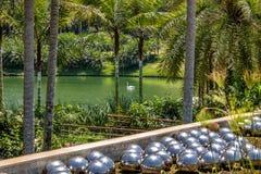 水仙庭院Inhotim公开当代艺术博物馆的- Brumadinho,米纳斯吉拉斯州,巴西草间弥生 图库摄影