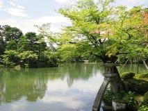 庭院kenrokuen池塘 免版税图库摄影