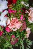 康乃馨和玫瑰花束的特写镜头  图库摄影