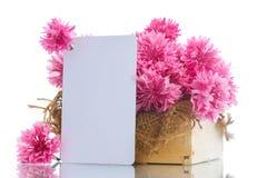 康乃馨明亮的花束  库存图片