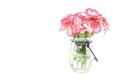 康乃馨花束在一个玻璃瓶的 库存图片