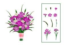 康乃馨花束,装饰用缎丝带,与花元素 背景查出的白色 皇族释放例证