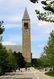 康奈尔大学 库存照片