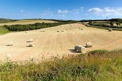 康沃尔郡与干草捆的国家场面喜欢在一个美好的晴朗的夏日的棉花卷轴 库存照片