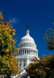 建立资本dc s u华盛顿黄色的秋天 免版税库存照片