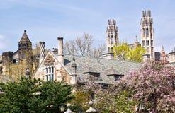 建筑法纯正的大学耶鲁 免版税图库摄影