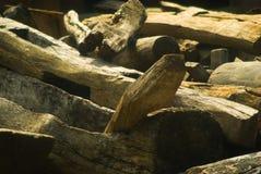 建筑老木头 免版税库存照片