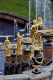 开化极大的历史记录博物馆一停放peterhof俄语的喷泉 盛大小瀑布的喷泉 Peterhof在联合国科教文组织的世界遗产名录名单包括 库存图片