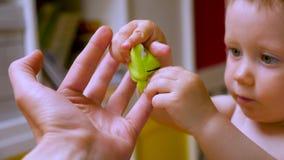 开发的创造性,能力认为新的事想象力 父母,成人哺育儿童的想象力和 影视素材