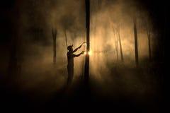 开发的橡胶树在晚上 免版税图库摄影