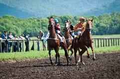 开始种族的赛马起始时间  免版税库存照片