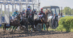 开始赛马在跑马场 免版税库存照片