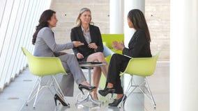 开小组的女实业家非正式会议 股票录像