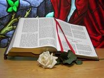 开张圣经,并且白色上升了 免版税图库摄影