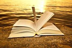 开张在海滩的书 免版税库存照片
