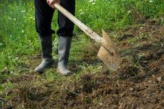 开掘与铁锹的农夫土壤,有胶靴的年轻成人人 免版税库存照片