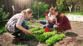 开掘和种植在有她的孩子的庭院里的美丽的少妇 图库摄影