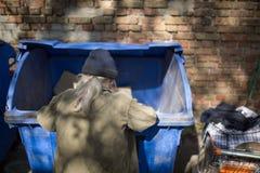开掘在垃圾箱的无家可归的老人 免版税库存图片