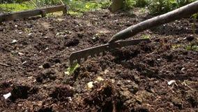 开掘布朗土壤的大镰刀 股票视频