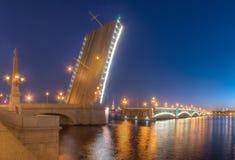 开放三位一体桥梁和涅瓦河夜视图  免版税图库摄影