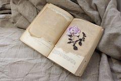 开放书的干燥标本集 图库摄影