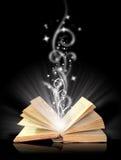 开放书的魔术 免版税库存照片