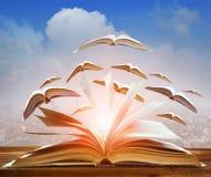 开放书飞行摘要当去未来的知识智慧 免版税库存照片