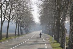 开放在Uzes之外的路;普罗旺斯 库存图片