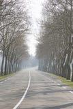开放在Uzes之外的路;普罗旺斯 免版税库存图片