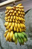 开放的市场香蕉 图库摄影