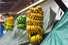 开放的市场香蕉 库存图片