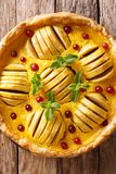 开放苹果饼用蔓越桔和乳蛋糕用mi装饰 库存图片
