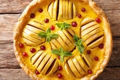 开放苹果饼用蔓越桔和乳蛋糕用mi装饰 免版税库存照片