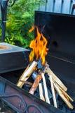 开放野营的火特写镜头射击烤肉的 库存图片