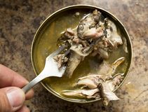 开放鱼蜜饯和鱼在叉子 免版税库存照片