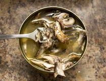 开放鱼蜜饯和鱼在叉子 免版税库存图片