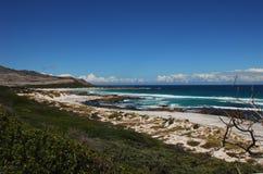 开普敦半岛,南非的非洲美好的海岸线 库存图片